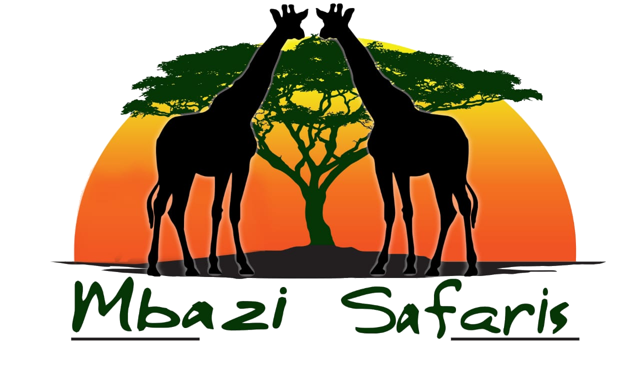 Mbazi Safaris